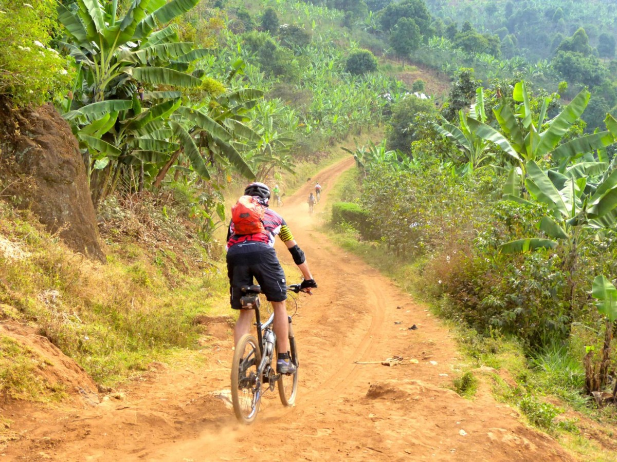 Ride through the beautiful national park landscape and see the Sipi Falls, covering an impressive 75 km over two days! Time to transition from water to wheels - You'll roam across rolling hills, tackle the winding roads and take in the panoramic views of the famously stunning Sipi Falls. Then recharge with a sippy-sippy of some locally grown coffee-coffee!